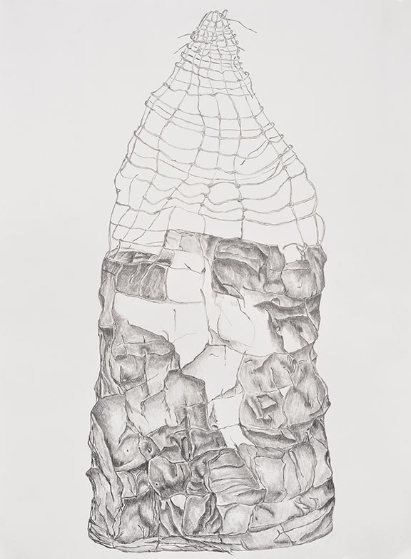 Stone and Wire - Pencil on Paper 40